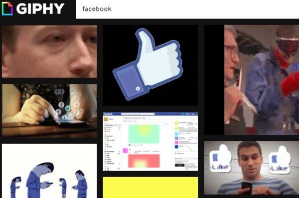 facebook giphy